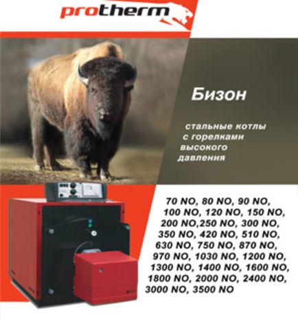 протерм бизон