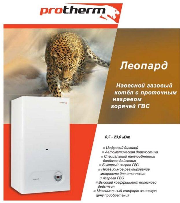 протерм леопард